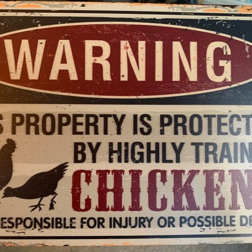 Metal Sign - Property Protected by Chickens - Use Indoor/Outdoor - Great Home and Farmhouse Décor photo review